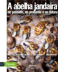 abelha-jandaira_Prancheta 1