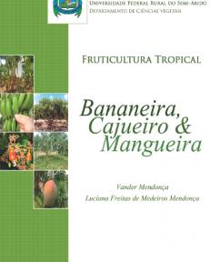 vander-bananeira-cajueiro-e-mangueira
